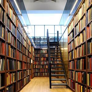 Библиотеки Шали