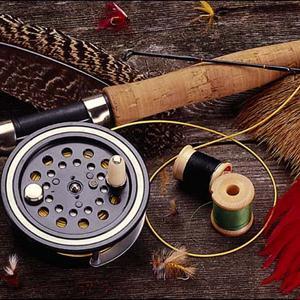Охотничьи и рыболовные магазины Шали