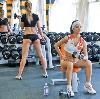 Фитнес-клубы в Шали